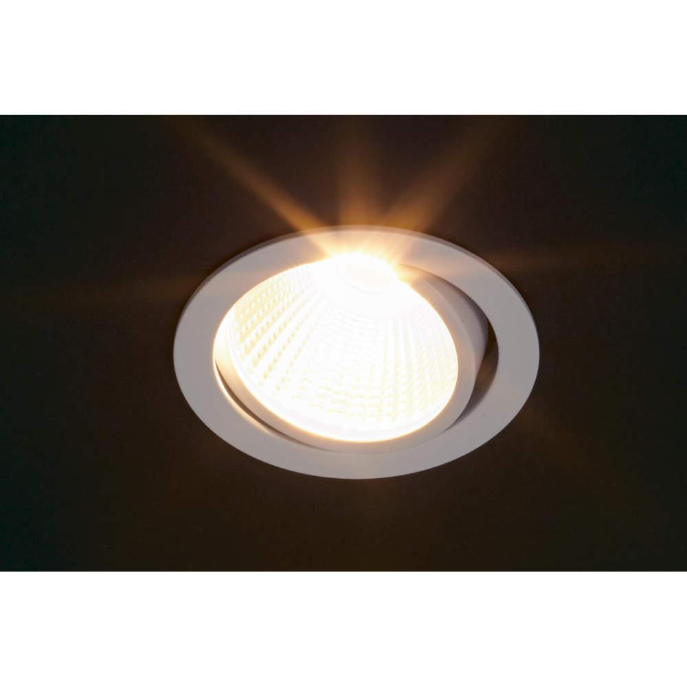 首振り機能付きのLED照明です。